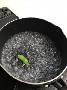 ゆでる枝豆